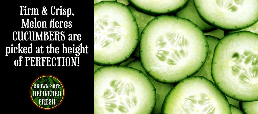 Header_Cucumbers